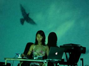 06sawakobird.jpg