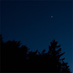 one-star.jpg